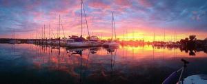 Ballena Isle Marina