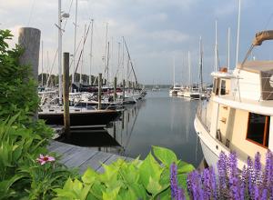 Brewer Cove Haven Marina