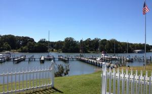 Carters Cove Marina