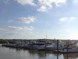 Fort Washington Marina
