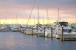 Henderson's Wharf Marina
