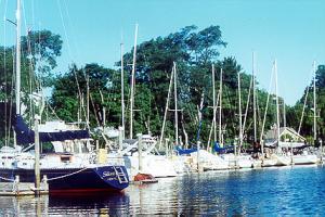 Schoolhouse Creek Marina