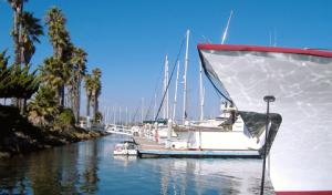 Peninsula Yacht Marina
