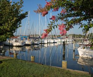Port Annapolis Marina