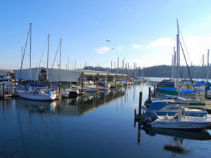 Port of Kingston Marina