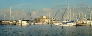 Regatta Pointe Marina