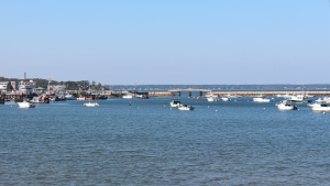 Plymouth Harbor