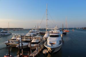 Vineyard Haven Marina