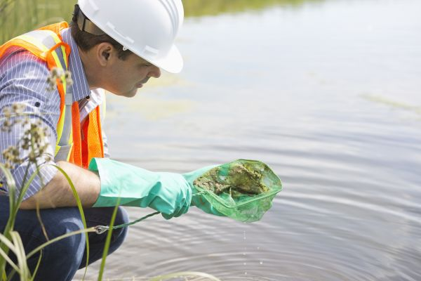 Water Pollution—Biomonitoring
