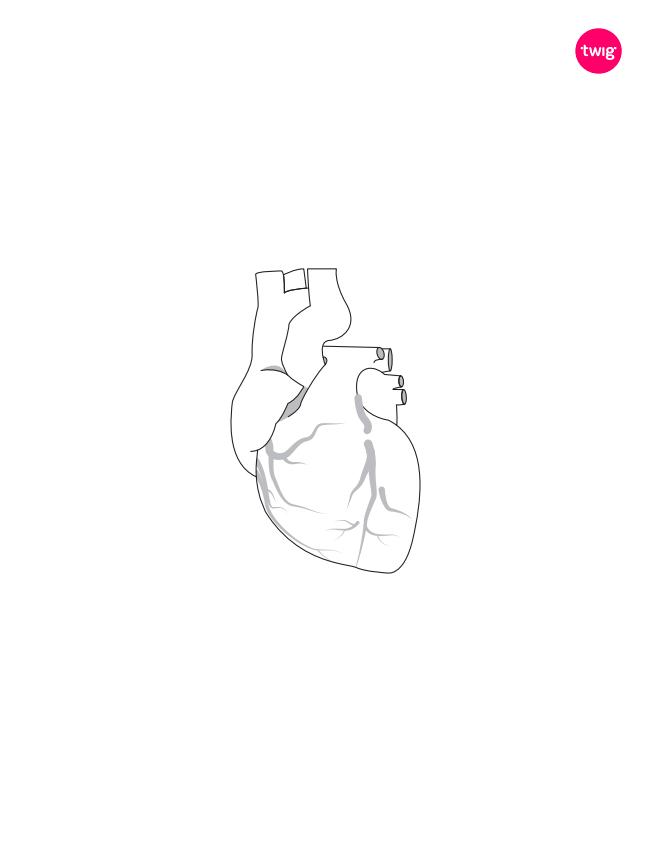 Heart cutout