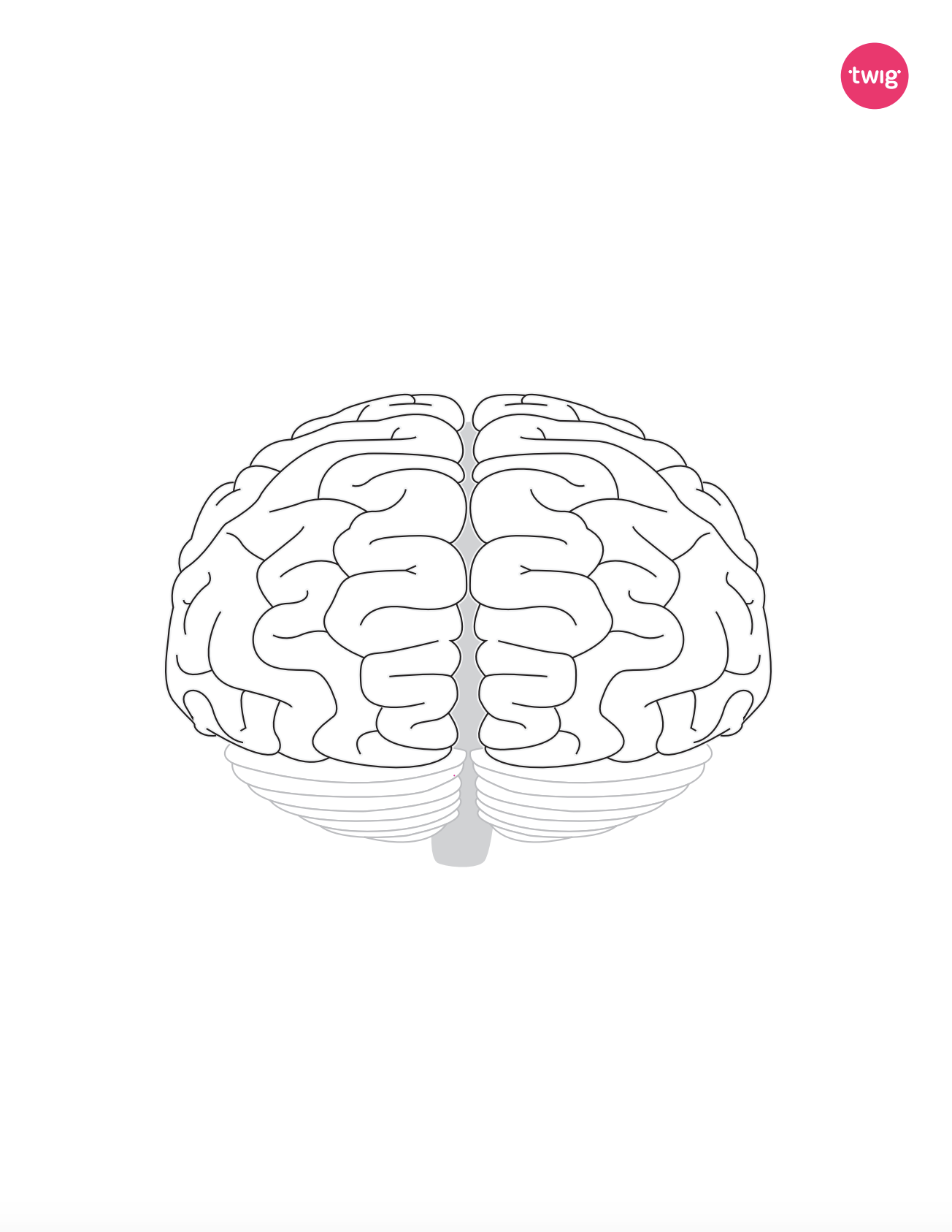Brain cutout