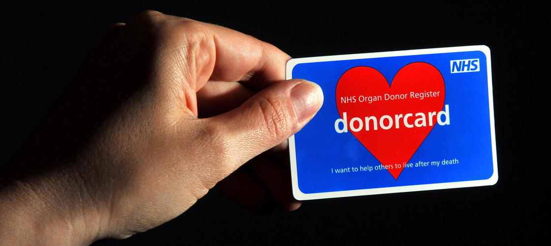 organ transplant and organ donor card Donate life america is a nonprofit organization 115,000 people are waiting for a lifesaving transplant one organ, eye and tissue donor can save and heal.