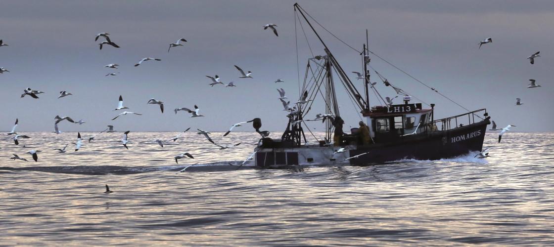 Scotland fisheries