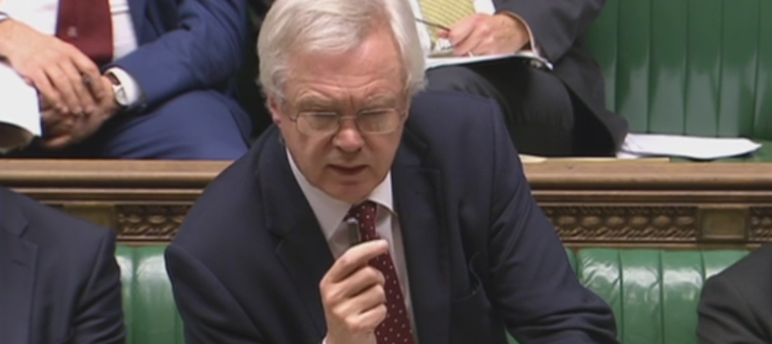 David Davis in the House of Commons