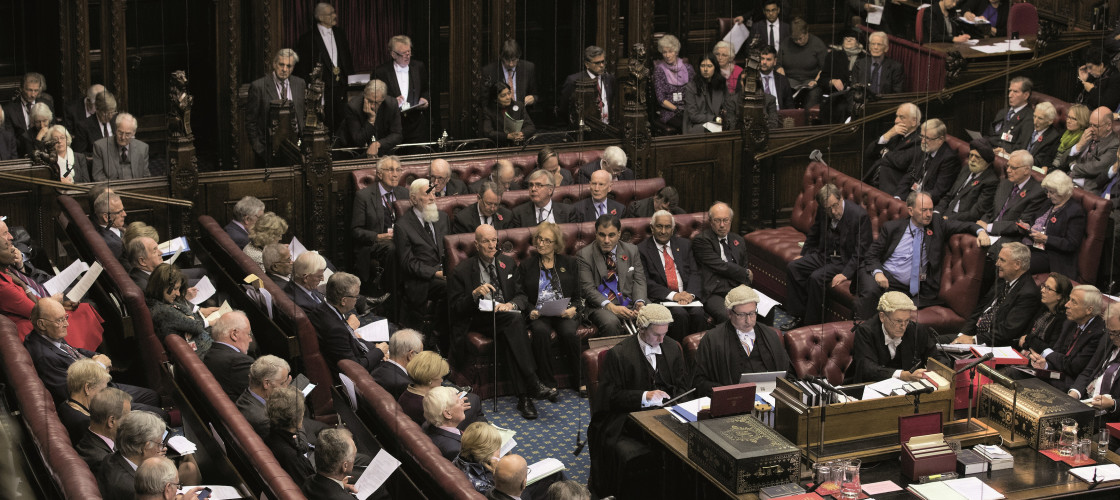 The EU (Withdrawal) Bill will arrive in the Lords in the new year