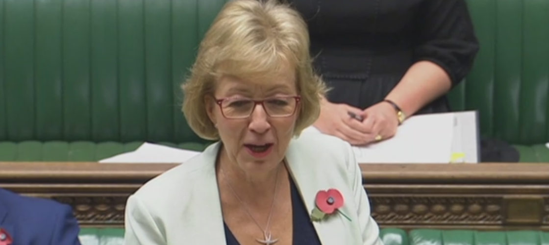 Andrea Leadsom speaking in the Commons this morning