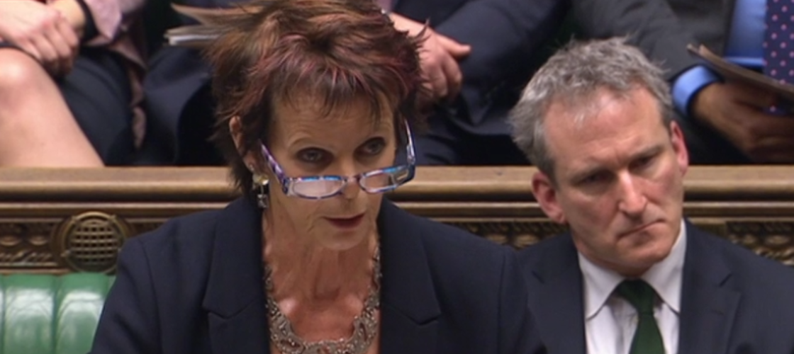 Anne Milton alongside Damian Hinds in the Commons this afternoon