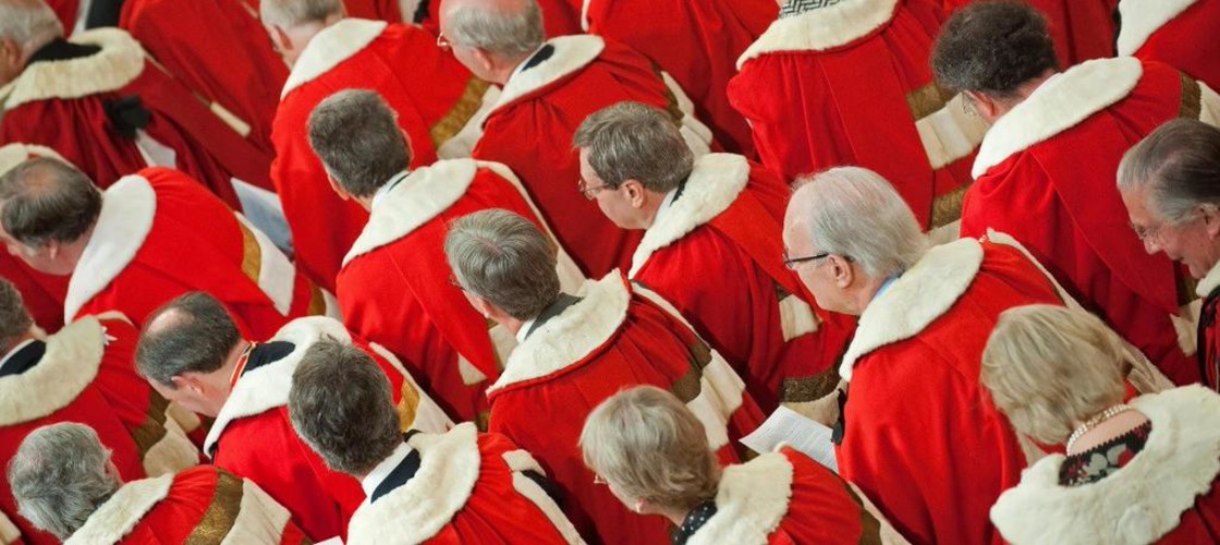 Theresa May urged to back bid to slash number of peers