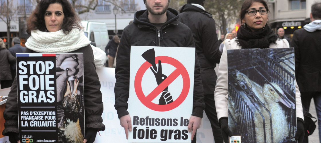 Animal rights activists protest against foie gras in Paris. While foie gras production is banned in the UK, around 200 tonnes is imported each year