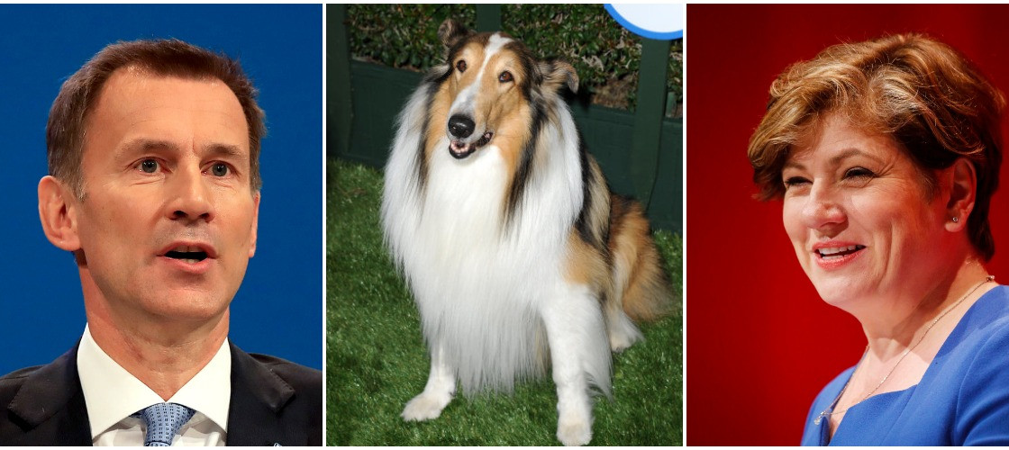 Jeremy Hunt, Lassie and Emily Thornberry