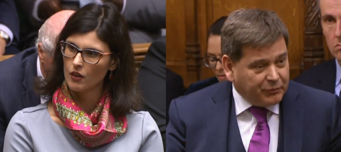 Layla Moran and Andrew Bridgen