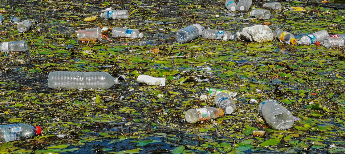 Plastic waste in a river