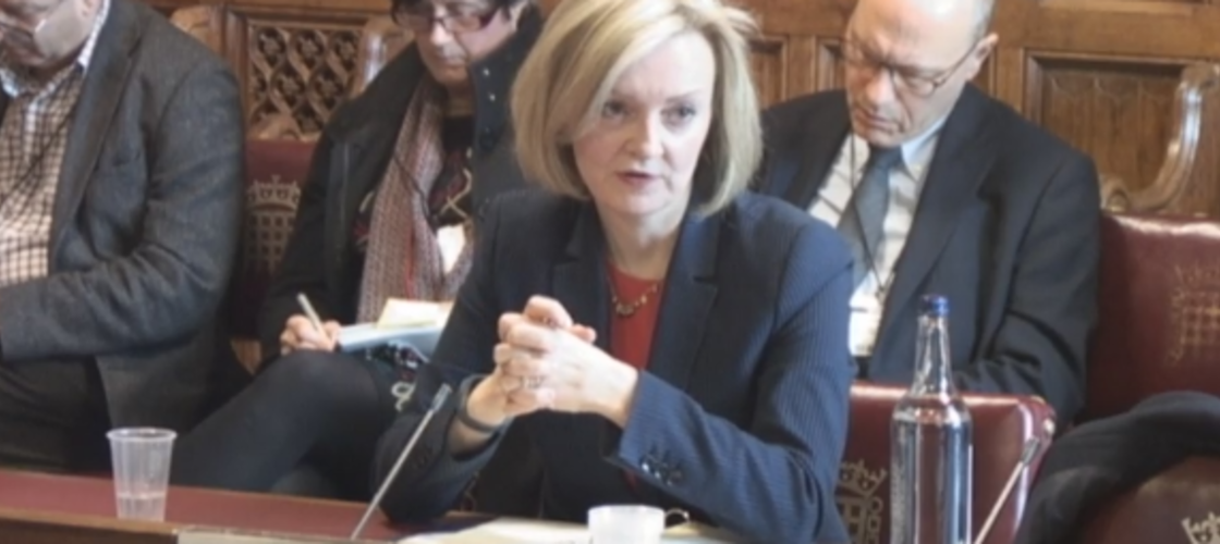 Liz Truss before the Lords Constitution Committee