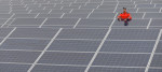 Man stands amongst solar panels in a solar farm