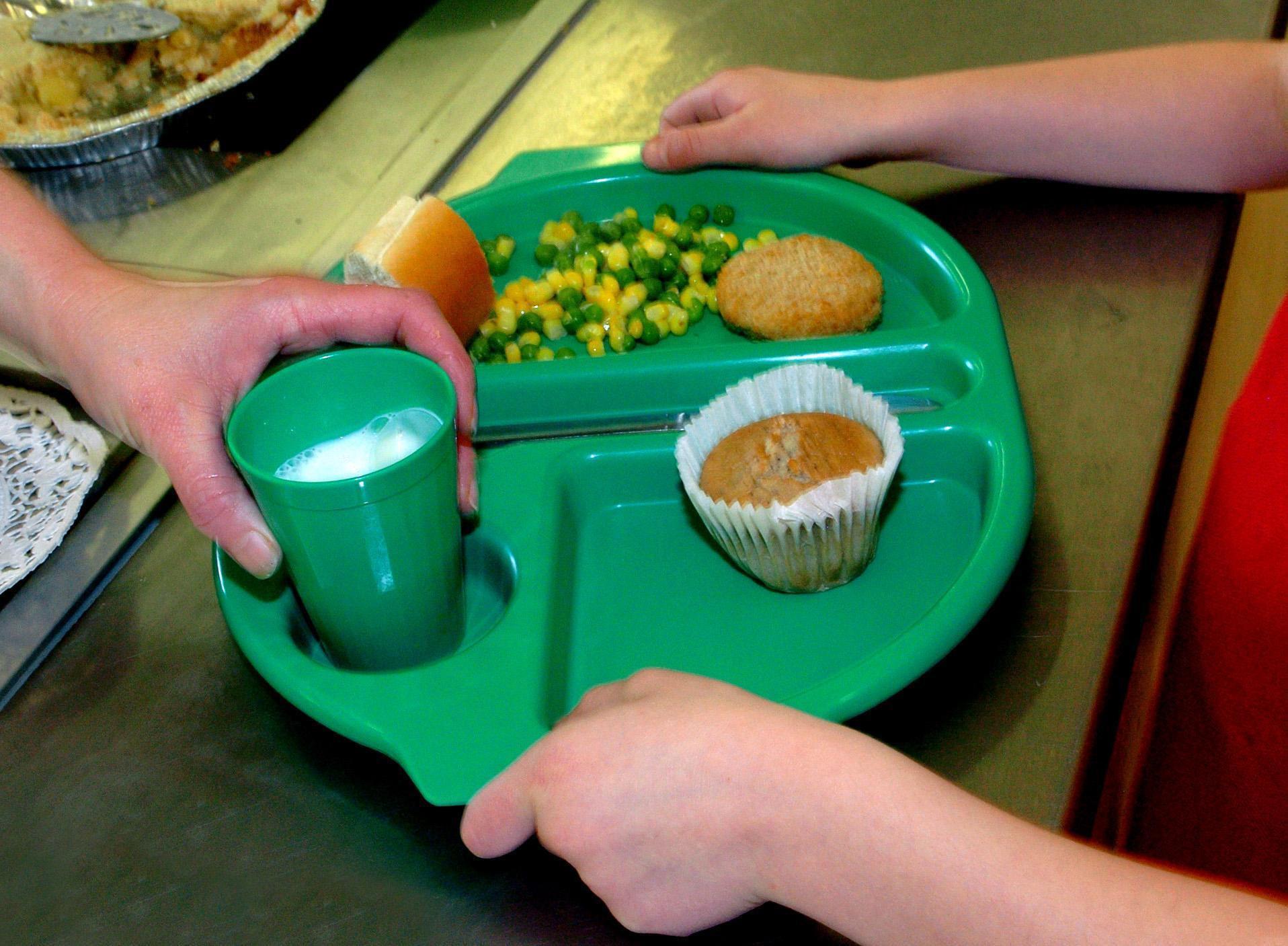 Free school meal