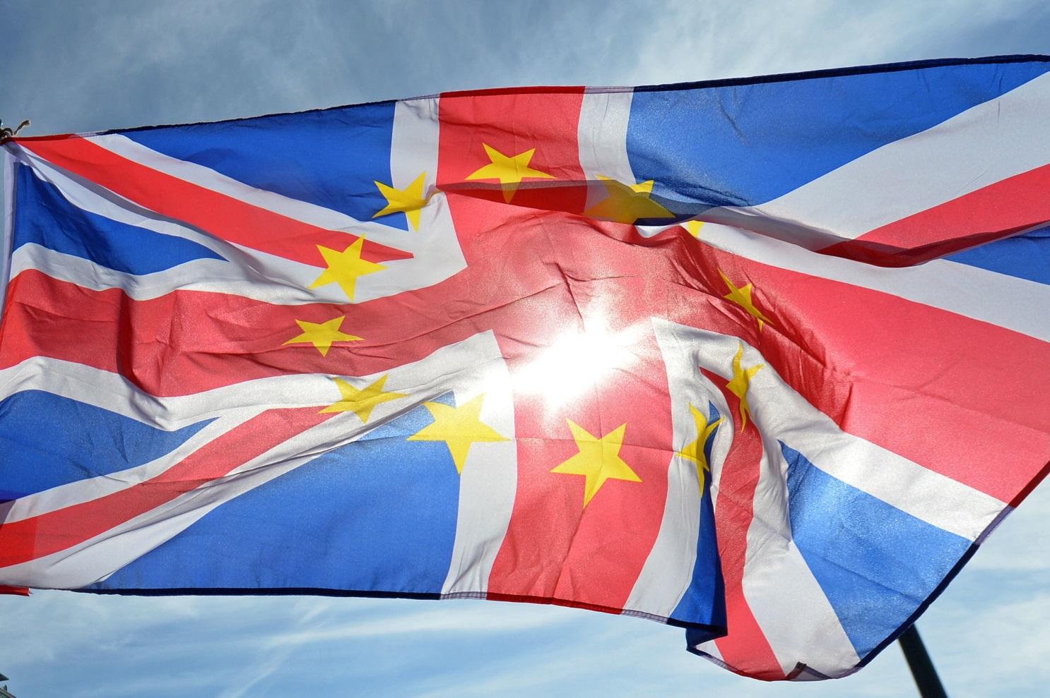 Brexit protest flag