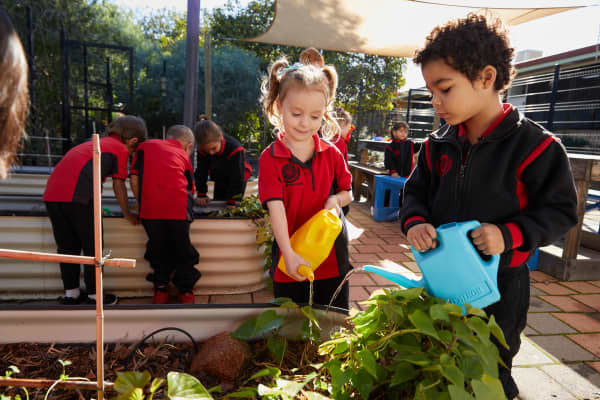 West Northam Primary School Pre-primary students watering their vegetable garden, as part of their science project.