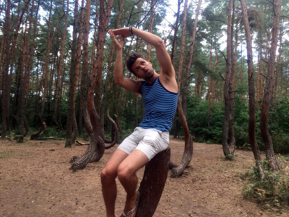 Szczecin Crooked Forest