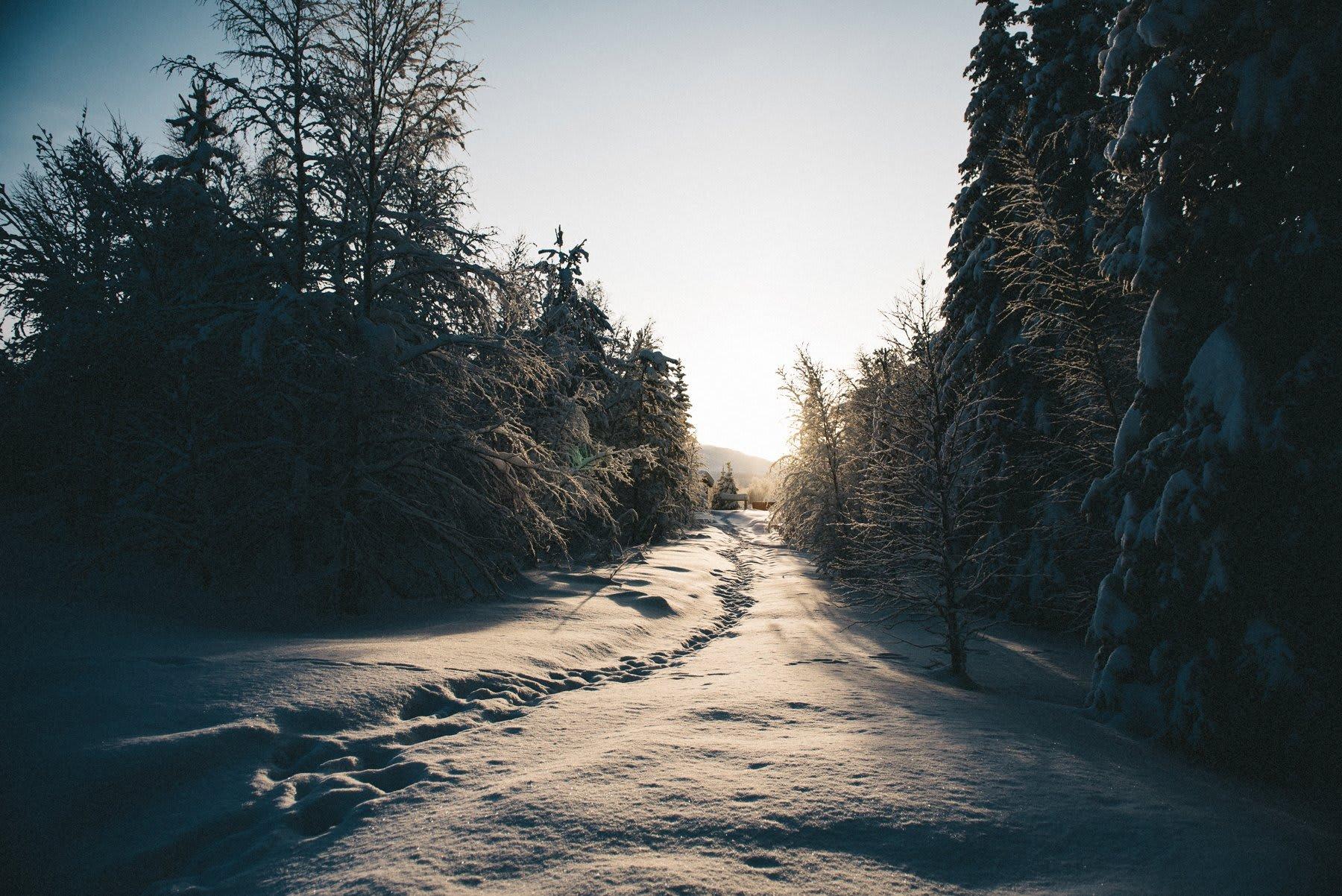 reisefotografie-lappland-finnland-103