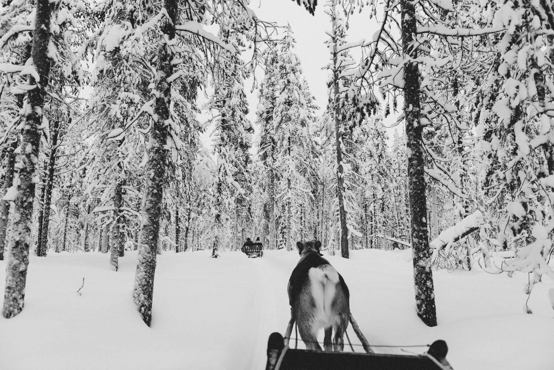 reisefotografie-lappland-finnland-134