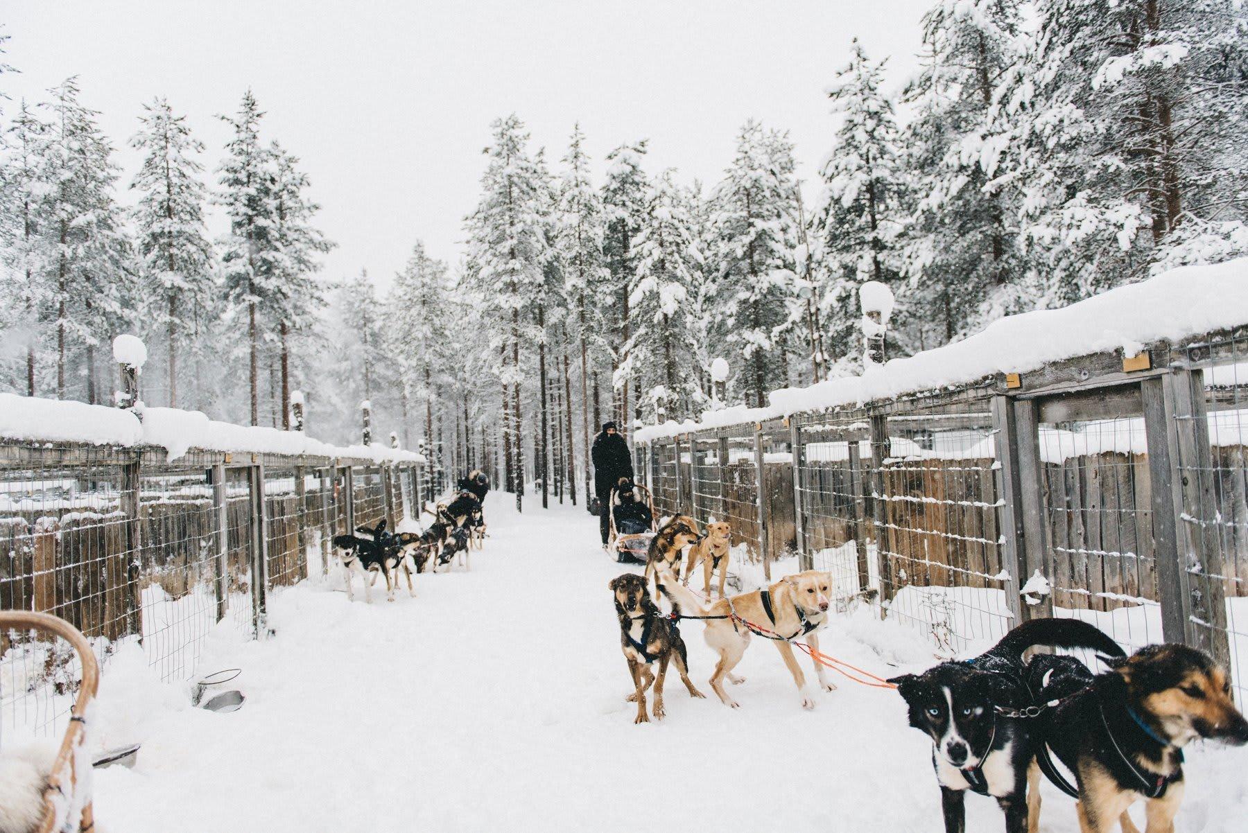 reisefotografie-lappland-finnland-158