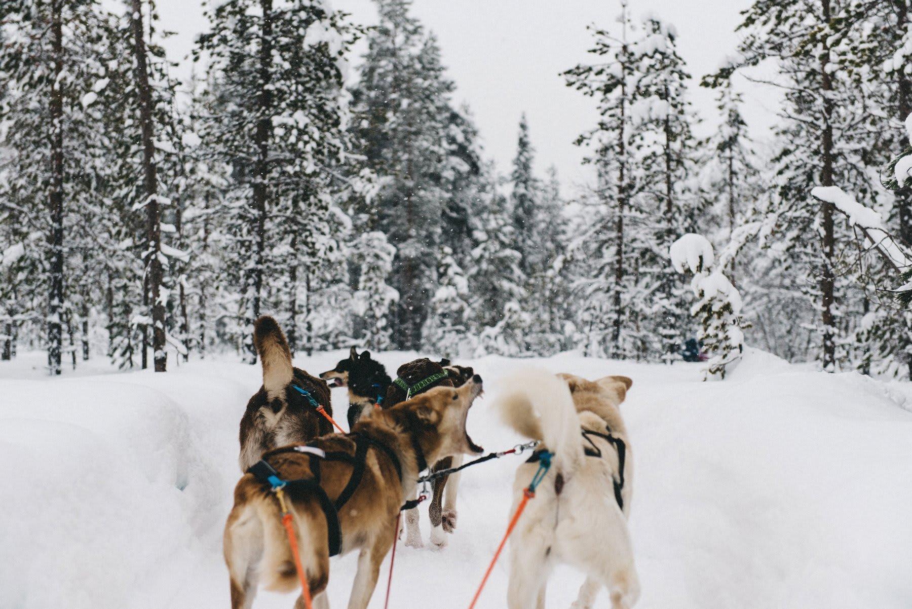 reisefotografie-lappland-finnland-161