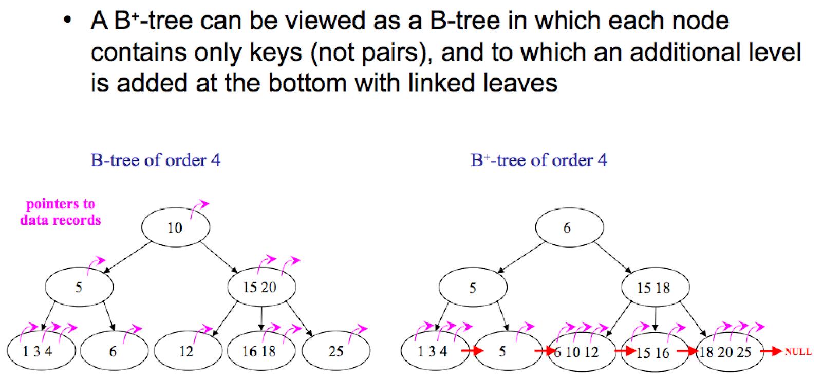 B tree vs. B+ tree