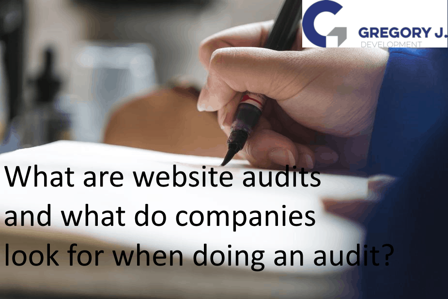 What are website audits and what do companies look for when doing an audit?