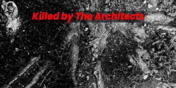 Killed by the Architects