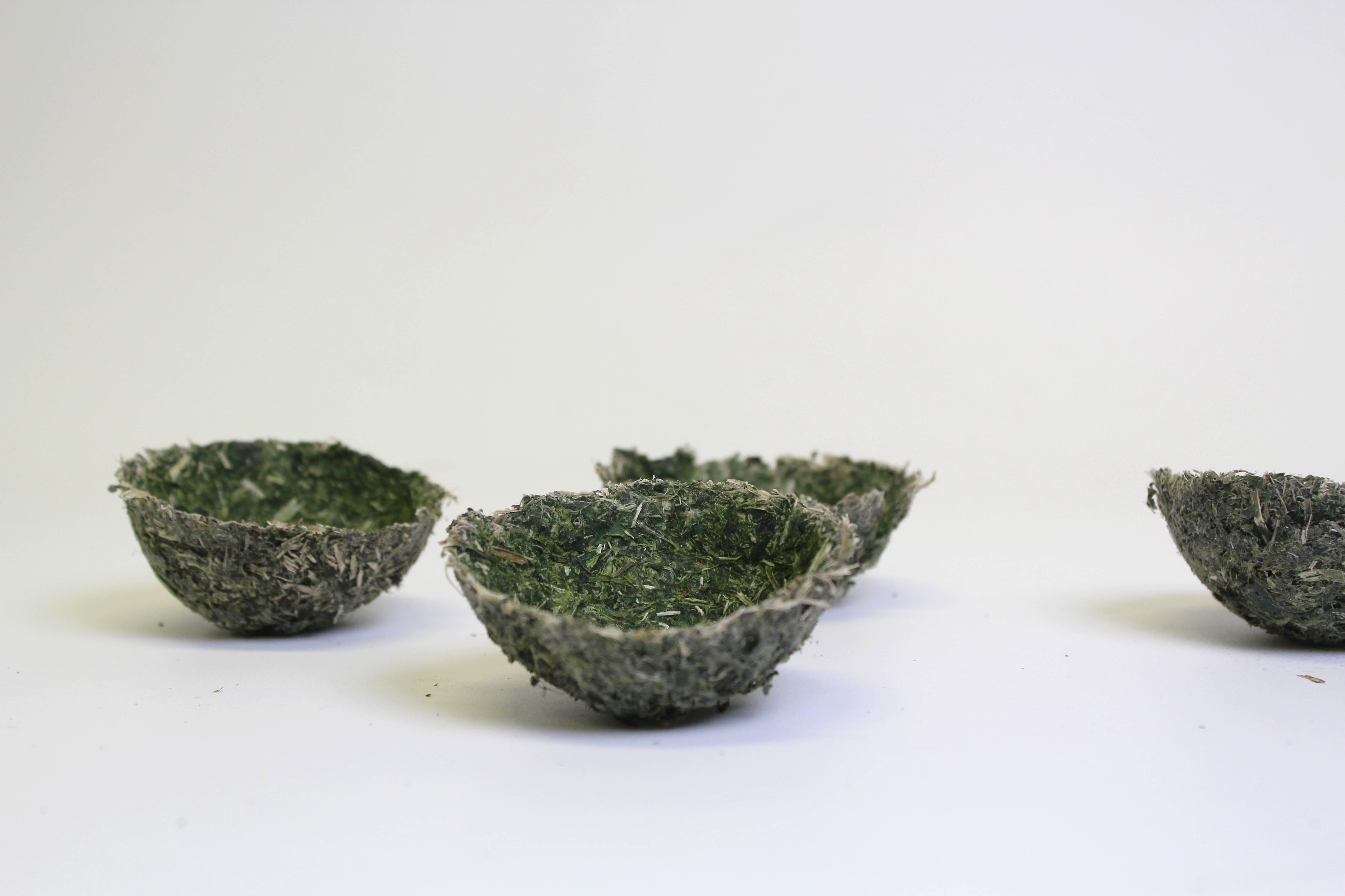 First vessel attempts