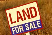 Land sales slump but prices hit new heights