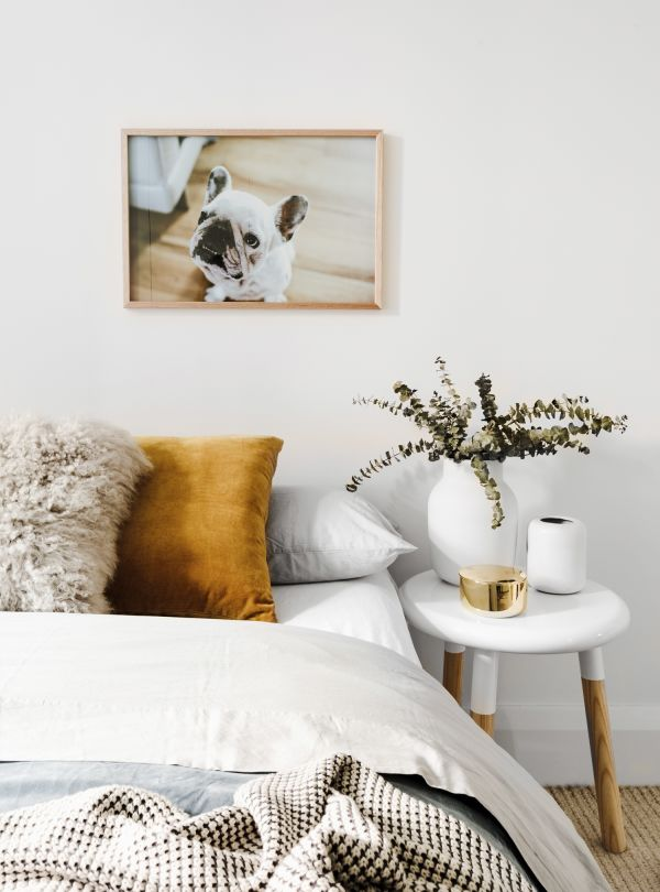 Expert advice: The art of choosing, framing and hanging art in your home