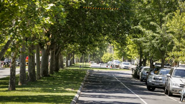 Melbourne's leafy east missing key features, new research suggests