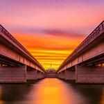 Kings Avenue sunset: James Robins