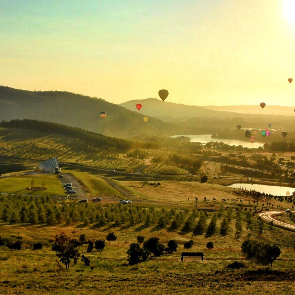 Hot air balloons over National Arboretum. Photo: Jess Dibbs