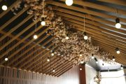 Why Australians have embraced Japanese design