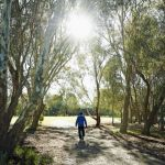 Experts weigh in on how to make our suburbs healthier