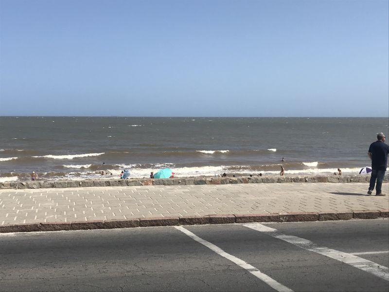 Montevideo - Playa Honda///https://res.cloudinary.com/dopdgngem/image/upload/v1579719715/seq6hxt3ydwrhhplowsa.jpg//////VoyalAgua///0.91///5///ESE///E///23///22///01///2020