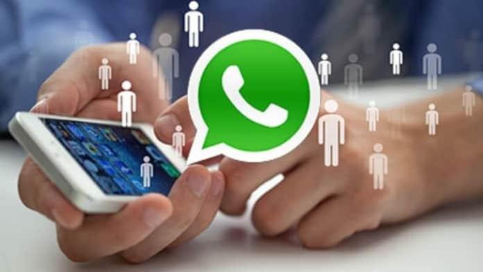 WhatsApp apeluri video si audio