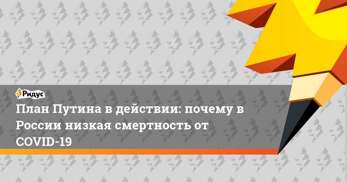 План Путина в действии: почему в России низкая смертность от COVID-19